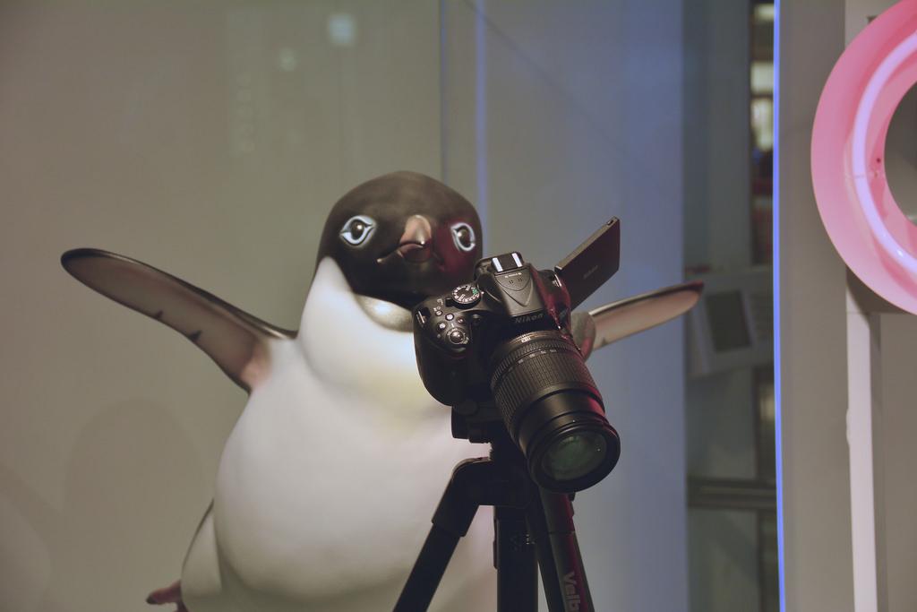 John Lewis Christmas Penguin